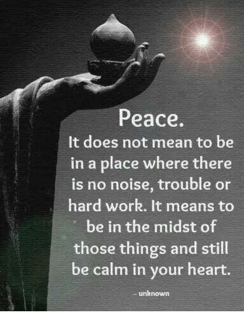 Memes, Work, and Heart: Peace.  It does not mean to be  in a place where there  is no noise, trouble or  hard work. It means to  be in the midst of  those things and still  be calm in your heart  unknown