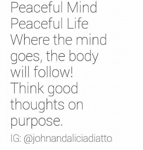 Peaceful Mind Peaceful Life Where The Mind Goes The Body Will Follow
