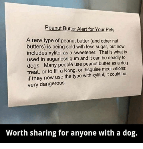 Peanut Butter Alert for Your Pets a New Type of Peanut