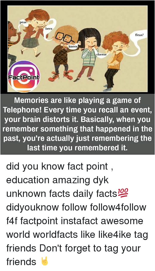 Memes, Flea, and 🤖: peas  bees  fleas?  knees  cheese  Fact Point  Memories are like playing a game of  Telephone! Every time you recall an event,  your brain distorts it. Basically, when you  remember something that happened in the  past, you're actually just remembering the  last time you remembered it. did you know fact point , education amazing dyk unknown facts daily facts💯 didyouknow follow follow4follow f4f factpoint instafact awesome world worldfacts like like4ike tag friends Don't forget to tag your friends 🤘