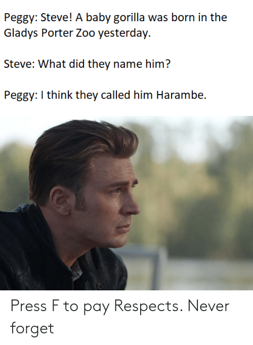 Never, Baby, and Harambe: Peggy: Steve! A baby gorilla was born in the  Gladys Porter Zoo yesterday.  Steve: What did they name him?  Peggy: I think they called him Harambe. Press F to pay Respects. Never forget
