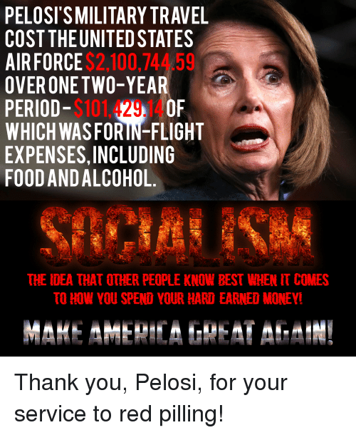 Anaconda, Food, and Money: PELOSI'S MILITARY TRAVEL  COST THEUNITED STATES  AIRFORCE  OVERONETWO-YEAR  PERIOD-$101429 OF  WHICH WASFORIN-FLIGHT  EXPENSES,INCLUDING  FOOD AND ALCOHOL.  $2.100,744.59  THE IDEA THAT OTHER PEOPLE KNOW BEST WHEN IT COMES  TO HOW YOU SPEND YOUR HARD EARNED MONEY!
