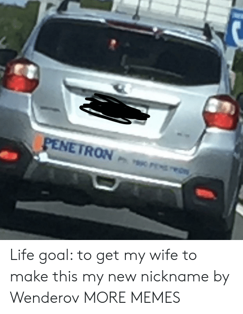 Dank, Life, and Memes: PENETRON wrs Life goal: to get my wife to make this my new nickname by Wenderov MORE MEMES