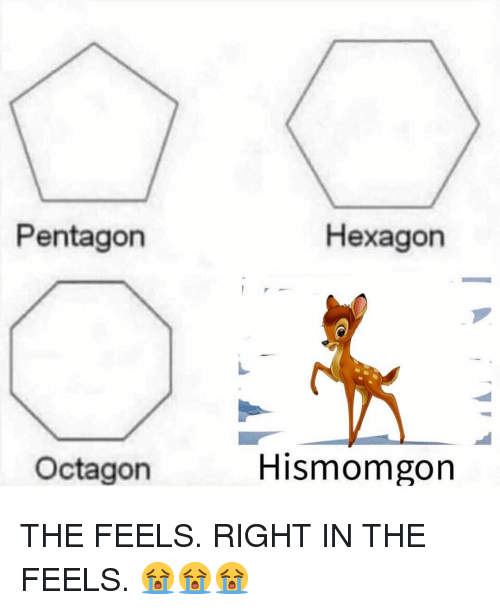Memes, Hexagon, and 🤖: Pentagon  Hexagon  Octagon  Hismomgon THE FEELS. RIGHT IN THE FEELS. 😭😭😭