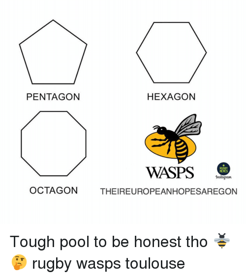 Instagram, Memes, and Hexagon: PENTAGON  HEXAGON  WASPS .  RUGBY  MEMES  Instagram  OCTAGON  THEIREUROPEANHOPESAREGON Tough pool to be honest tho 🐝🤔 rugby wasps toulouse