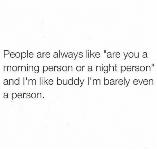 """You, Person, and Buddy: People are always like """"are you a  morning person or a night person""""  and I'm like buddy I'm barely even  a person."""