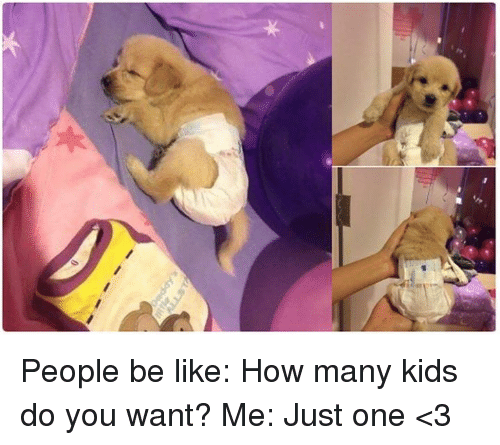 Be Like, Memes, and Kids: People be like: How many kids do you want? Me: Just one <3