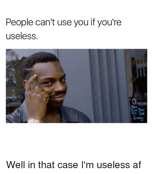 You Are Useless Meme