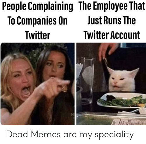 Memes, Twitter, and Account: People Complaining The Employee That  To Companies On  Just Runs The  Twitter Account  Twitter Dead Memes are my speciality