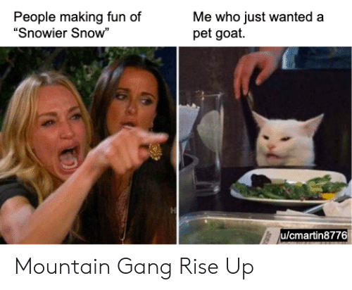 "Goat, Gang, and Snow: People making fun of  ""Snowier Snow""  Me who just wanted a  pet goat.  H  u/cmartin8776 Mountain Gang Rise Up"