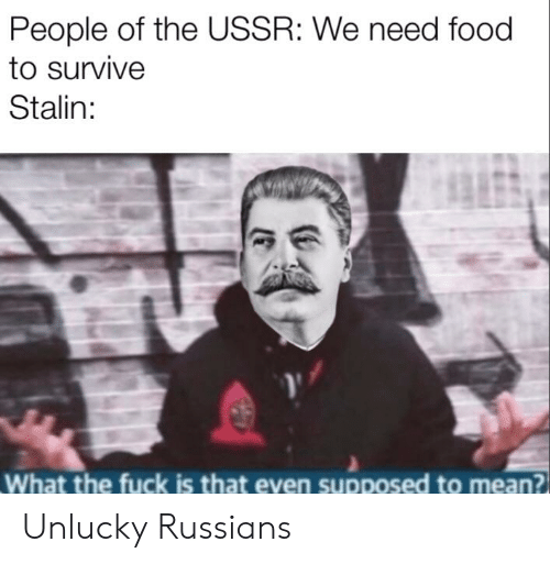 Food, Fuck, and Mean: People of the USSR: We need food  to survive  Stalin:  What the fuck is that even supposed to mean? Unlucky Russians