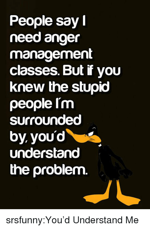 Tumblr, Blog, and Http: People say  need anger  management  classes. But if you  knew the stupio  people Im  surrounded  by youd  understand  the problem. srsfunny:You'd Understand Me