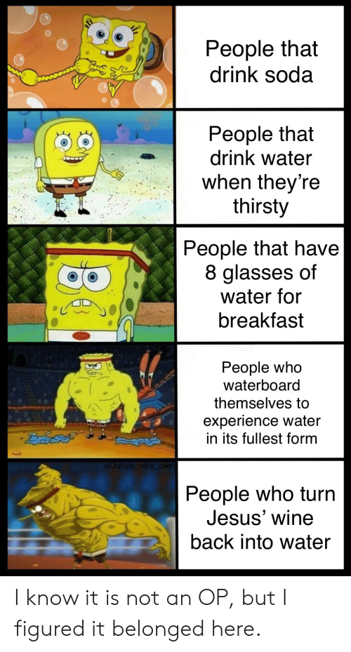 Jesus, Soda, and Thirsty: People that  drink soda  People that  drink water  when theyre  thirsty  People that have  8 glasses of  water for  breakfast  People Who  Waterboard  themselves to  experience water  in its fullest form  u/Junes very _own  People who turn  Jesus' wine  back into water I know it is not an OP, but I figured it belonged here.
