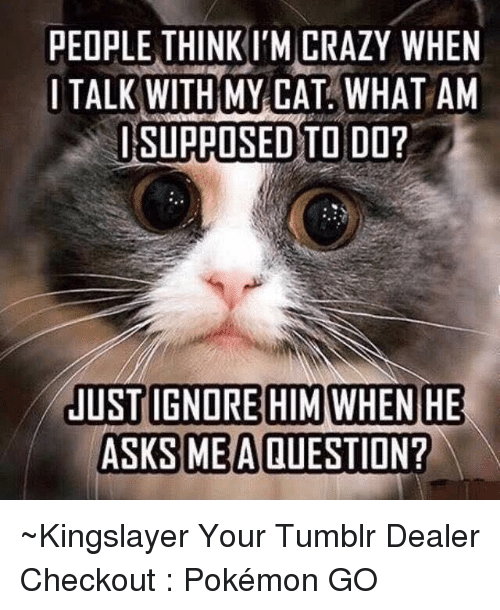 Crazy, Dank, and Ignorant: PEOPLE THINK M CRAZY WHEN  I TALK WITH MY CAT WHAT AM  ISUPPOSED TODD?  JUST IGNORE HIM WHEN HE  ASKS ME A QUESTION? ~Kingslayer Your Tumblr Dealer  Checkout : Pokémon GO