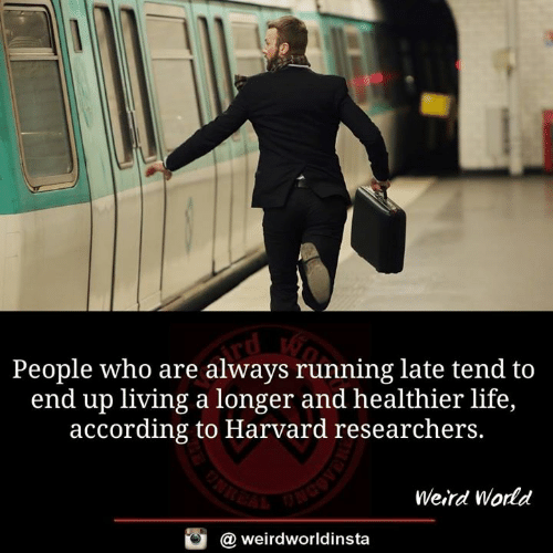 Life, Memes, and Weird: People who are always running late tend to  end up living a longer and healthier life,  according to Harvard researchers.  Weird World  @ weirdworldinsta