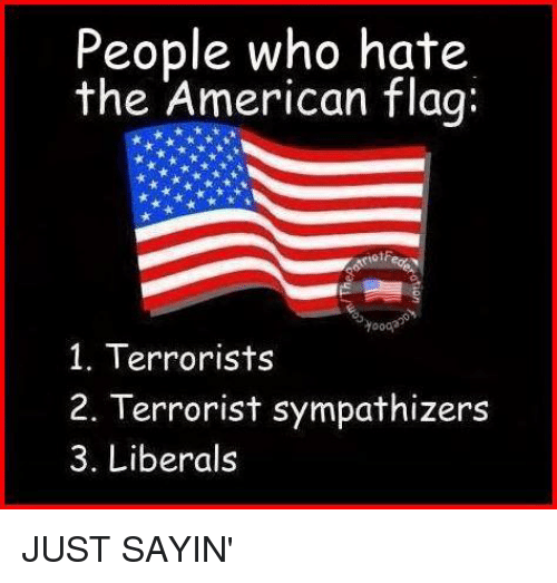 People Who Hate the American Flag Yooo 1 Terrorists 2 Terrorist  Sympathizers 3 Liberals JUST SAYIN' | Meme on ME.ME