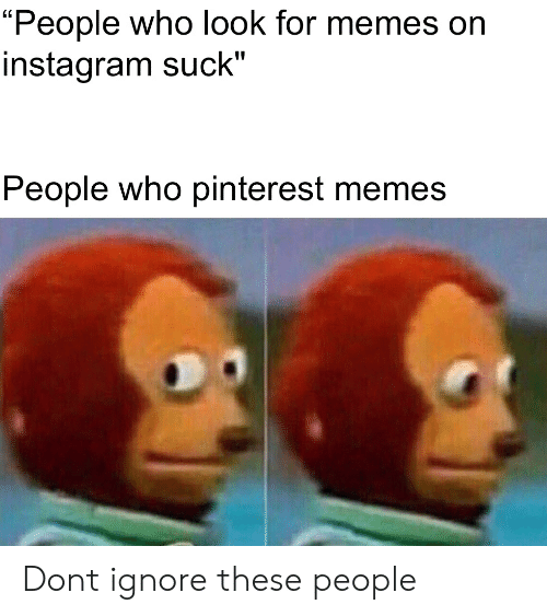 """Instagram, Memes, and Reddit: """"People who look for memes on  instagram suck""""'  People who pinterest memes Dont ignore these people"""