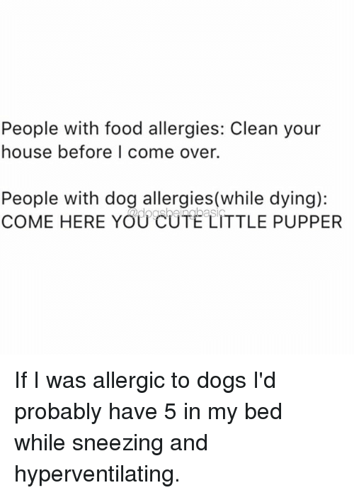 Come Over, Dogs, and Food: People with food allergies: Clean your  house before I come over.  People with dog allergies(while dying):  COME HERE YOUCUTE LITTLE PUPPER If I was allergic to dogs I'd probably have 5 in my bed while sneezing and hyperventilating.