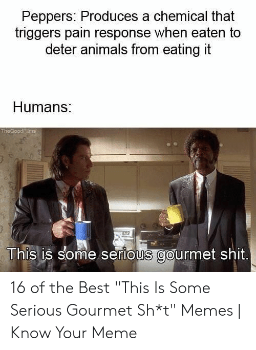 "Animals, Meme, and Memes: Peppers: Produces a chemical that  triggers pain response when eaten to  deter animals from eating it  Humans:  TheGoodFilmsi  This is some serious gourmet shit. 16 of the Best ""This Is Some Serious Gourmet Sh*t"" Memes 