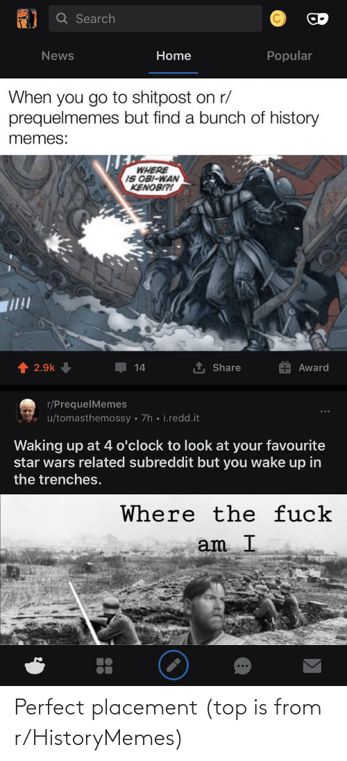 History, Top, and Perfect: Perfect placement (top is from r/HistoryMemes)