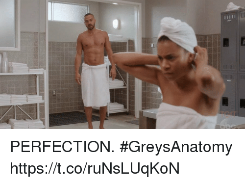 Memes, 🤖, and Greysanatomy: PERFECTION. #GreysAnatomy https://t.co/ruNsLUqKoN