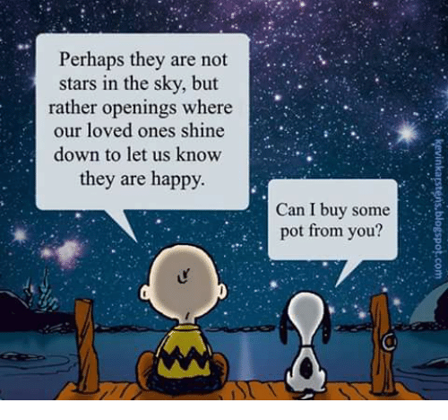 perhaps-they-are-not-stars-in-the-sky-bu