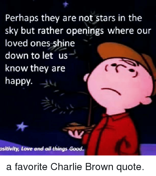 Perhaps They Are Not Stars in the Sky but Rather Openings ...