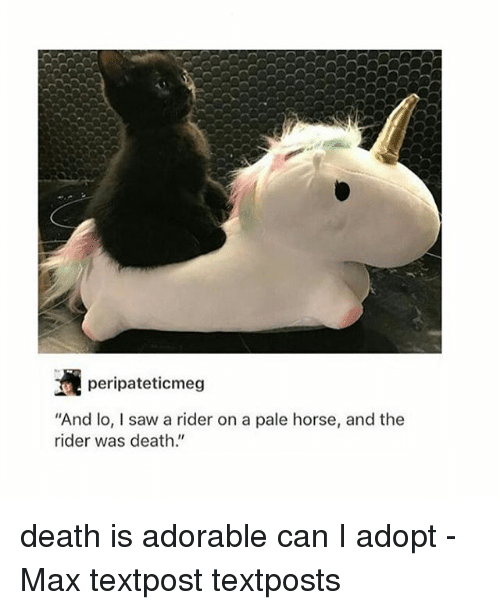 "Memes, Saw, and Death: peripateticmeg  And lo, I saw a rider on a pale horse, and the  rider was death."" death is adorable can I adopt - Max textpost textposts"