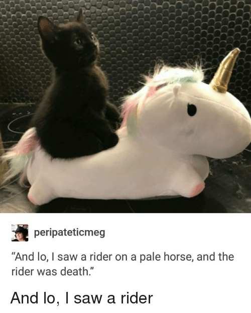 Peripateticmeg and Lo I Saw a Rider on a Pale Horse and the Ider Was