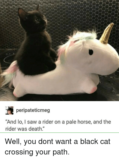 "Saw, Black, and Death: peripateticmeg  ""And lo, I saw a rider on a pale horse, and the  rider was death."" Well, you dont want a black cat crossing your path."