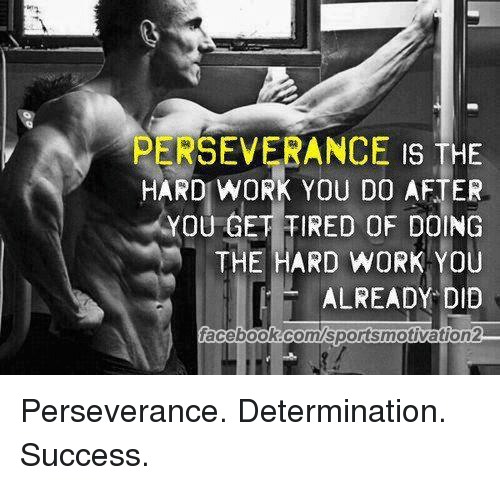 Perseverance Is The Hard Work You Do After You Get Ired Of Doing The