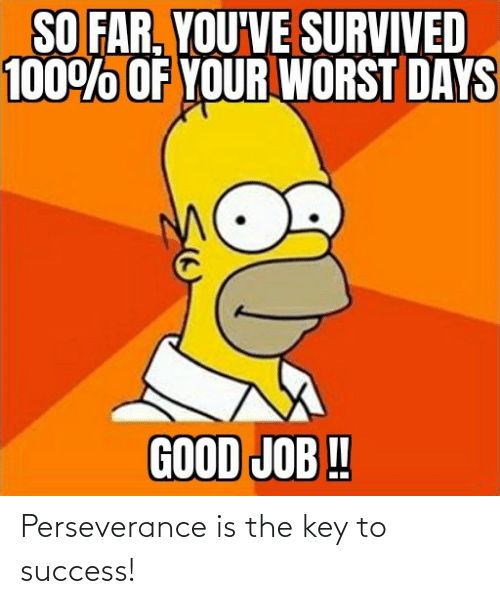 Perseverance, Success, and Key: Perseverance is the key to success!