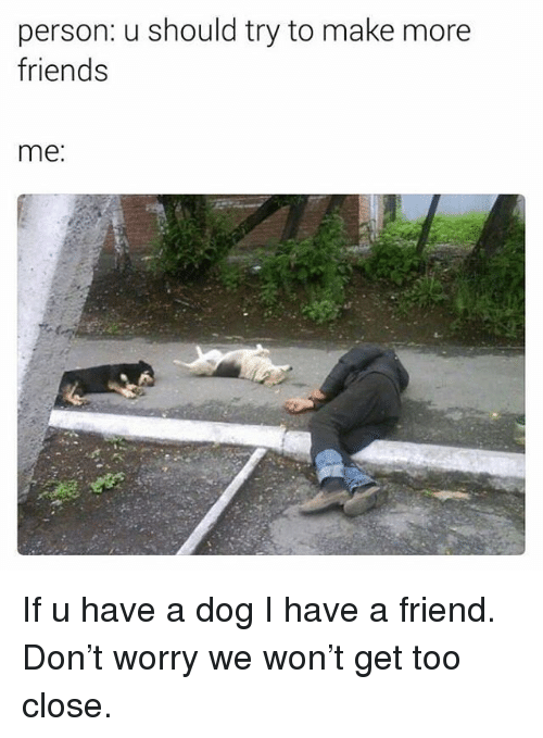 Friends, Funny, and Dog: person: u should try to make more  friends  me. If u have a dog I have a friend. Don't worry we won't get too close.