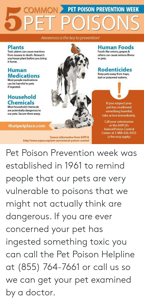 Doctor, Memes, and Control: PET POISON PREVENTION WEEK  PET POISONS  Awareness is the key to prevention!  Plants  Toxic plants can cause reactions  from nausea to death. Research  any house plant before you bring  it home.  Human Foods  Foods like onions, grapes &  others can cause serious illness  in pets  Rodenticides  Keep pets away from traps,  bait or poisoned rodents.  Human  Medications  Most people medications  can be harmful to pets  if ingested.  Household  Chemicals  Most household chemicals  are potentially dangerous to  our pets. Secure them away.  If you suspect your  pet has swallowed  something harmful,  take action immediately  Call your veterinariarn  or the ASPCA's  Animal Poison Control  Center at 1-888-426-4435  (a fee may apply)  thatpetplace.com  Source information from ASPCA  http://www.aspca.org/pet-care/animal-poison-control Pet Poison Prevention week was established in 1961 to remind people that our pets are very vulnerable to poisons that we might not actually think are dangerous.  If you are ever concerned your pet has ingested something toxic you can call the Pet Poison Helpline at  (855) 764-7661 or call us so we can get your pet examined by a doctor.