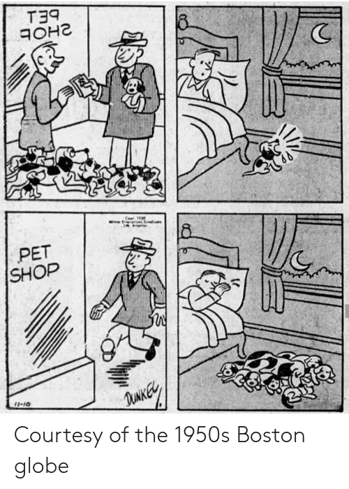 Boston, Boston Globe, and Shop: PET  SHOP Courtesy of the 1950s Boston globe