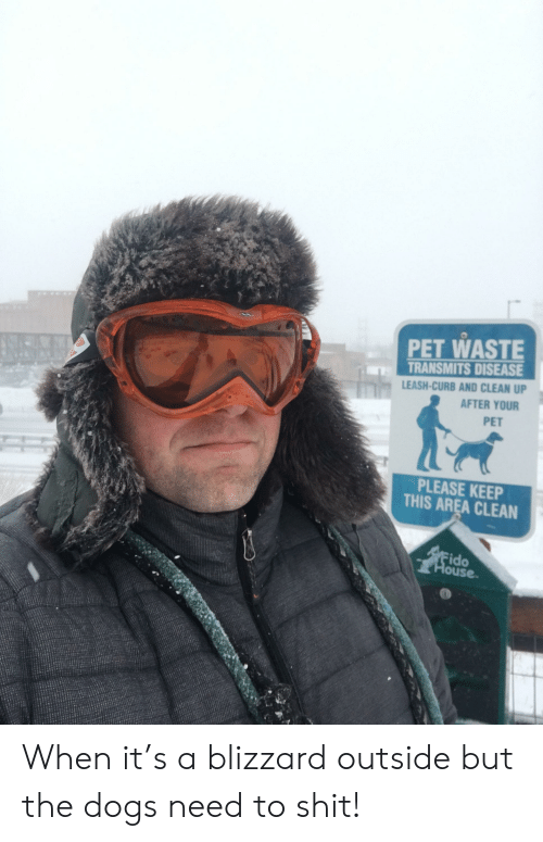 Dogs, Shit, and Blizzard: PET WASTE  TRANSMITS DISEASE  LEASH-CURB AND CLEAN UP  AFTER YOUR  PET  PLEASE KEE  THIS AREA CLEAN  ido  ouse When it's a blizzard outside but the dogs need to shit!