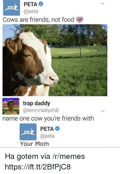 Food, Friends, and Memes: @peta  Cows are friends, not food  trap daddy  @terminallychill  name one cow you're friends with  PETA  @peta  PCTA  Your Mom Ha gotem via /r/memes https://ift.tt/2BfPjC8