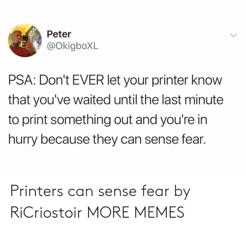 Dank, Memes, and Target: Peter  @okigboXL  PSA: Don't EVER let your printer know  that you've waited until the last minute  to print something out and you're in  hurry because they can sense fear. Printers can sense fear by RiCriostoir MORE MEMES