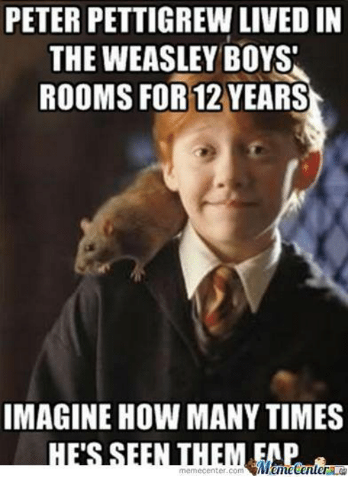 How Many Times, Memes, and Live: PETER PETTIGREW LIVED IN  THE WEASLEY BOYS  ROOMS FOR 12 YEARS  IMAGINE HOW MANY TIMES  Mametenuer  memecenter com