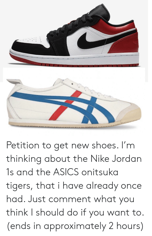 100% authentic 8c767 0aa9b Petition to Get New Shoes I'm Thinking About the Nike Jordan ...