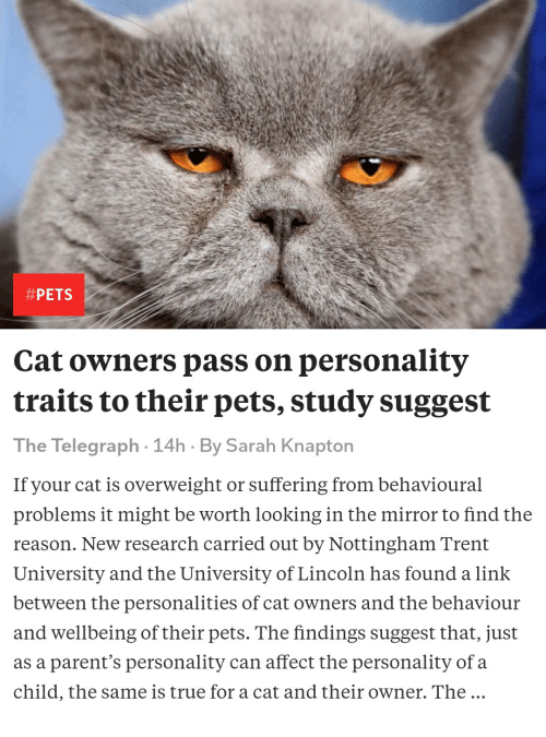PETS Cat Owners Pass on Personality Traits to Their Pets
