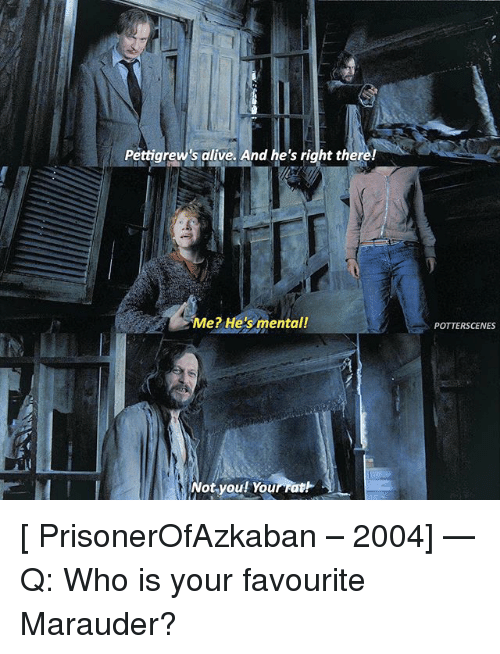 Alive, Memes, and 🤖: Pettigrew's alive. And he's right there!  Me? He's mental!  POTTERSCENES  Not.you! Youmat卜  Not.youl Yourratt [ PrisonerOfAzkaban – 2004] — Q: Who is your favourite Marauder?