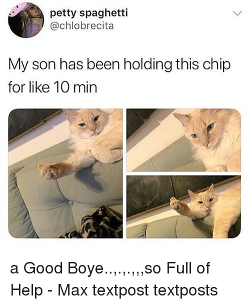 Memes, Petty, and Good: petty spaghetti  @chlobrecita  My son has been holding this chip  for like 10 min a Good Boye..,.,.,,,so Full of Help - Max textpost textposts
