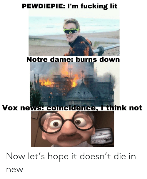 Fucking, Lit, and News: PEWDIEPIE: I'm fucking lit  Notre dame: burns dowrn  Vox news. coincidence  nk not Now let's hope it doesn't die in new
