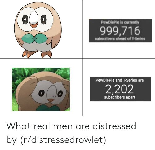 Real, Series, and What: PewDiePie is currently  999,716  subscribers ahead of T-Series  PewDiePie and T-Series are  2,202  subscribers apart What real men are distressed by (r/distressedrowlet)