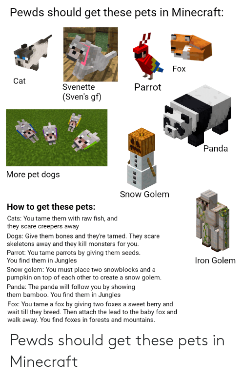 Pewds Should Get These Pets in Minecraft Fox Cat Parrot