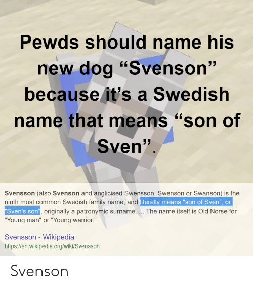 Pewds Should Name His New Dog Svenson Because It S A Swedish Name