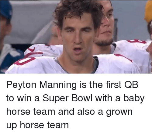 peyton manning is the first qb to win a super 961489 ✅ 25 best memes about baby horses baby horses memes,Funny Airplane Meme Peyton Manning