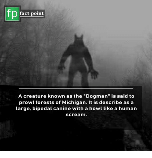 "Memes, Scream, and Michigan: Pfact point  A creature known as the ""Dogman"" is said to  prowl forests of Michigan. It is describe as a  large, bipedal canine with a howl like a human  scream."