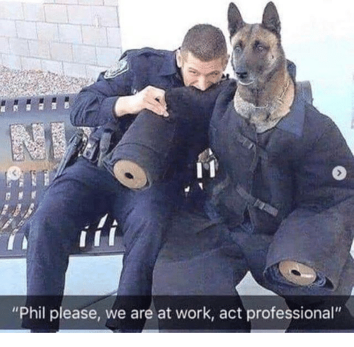 """Dank, Work, and 🤖: """"Phil please, we are at work, act professional"""""""